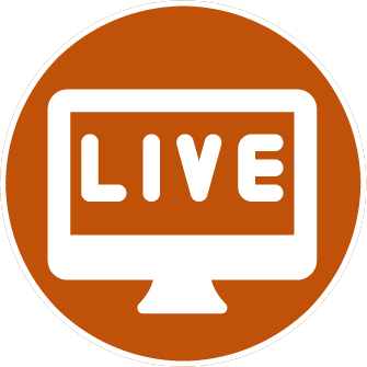 digital view evenementen streamen rand