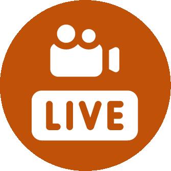 digital view live stream